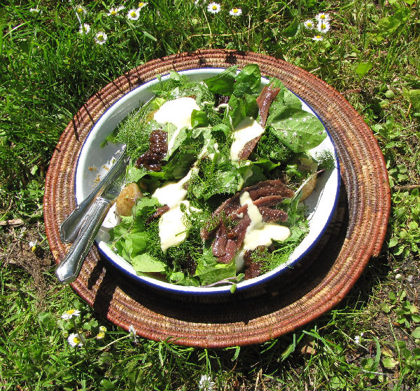 Anchovy salad with wild leaves