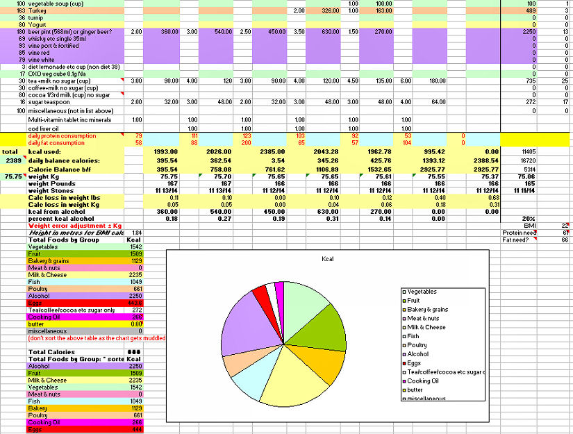 larger view of the weekly diet spreadsheet