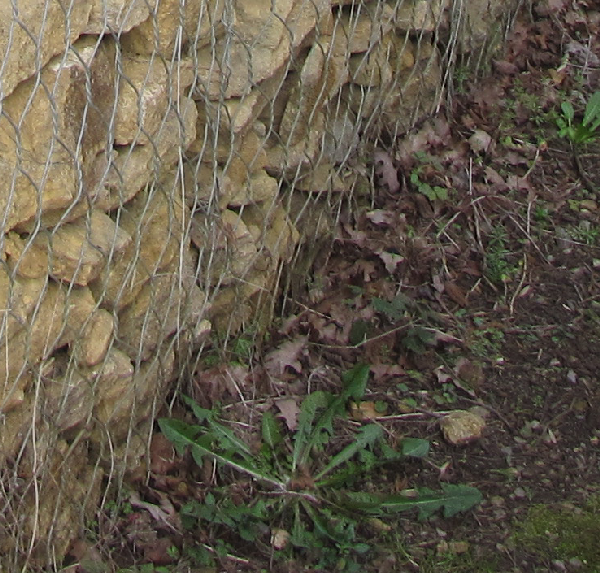gabion close up